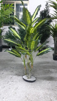 Artificial high quality Chinese evergreen plant with plastic pot