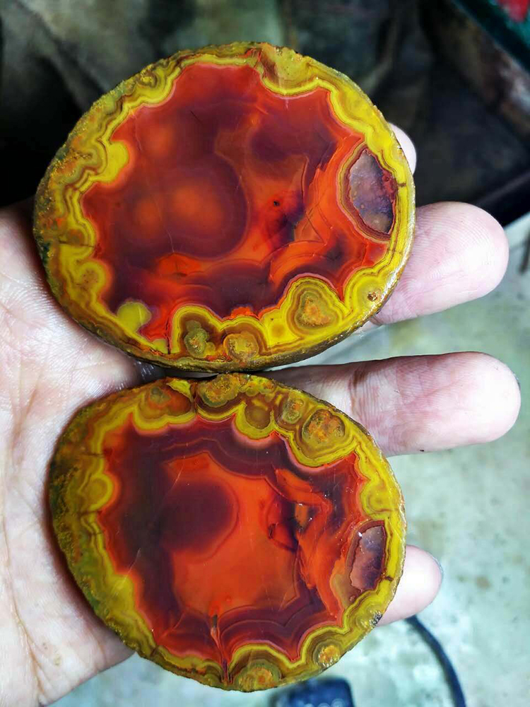 Chinese Fighting Blood Agate (FBA) FX-A0041 for Business Gift