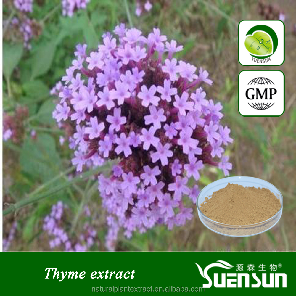 Natural Pure Thyme extract ,20% 30% thymol