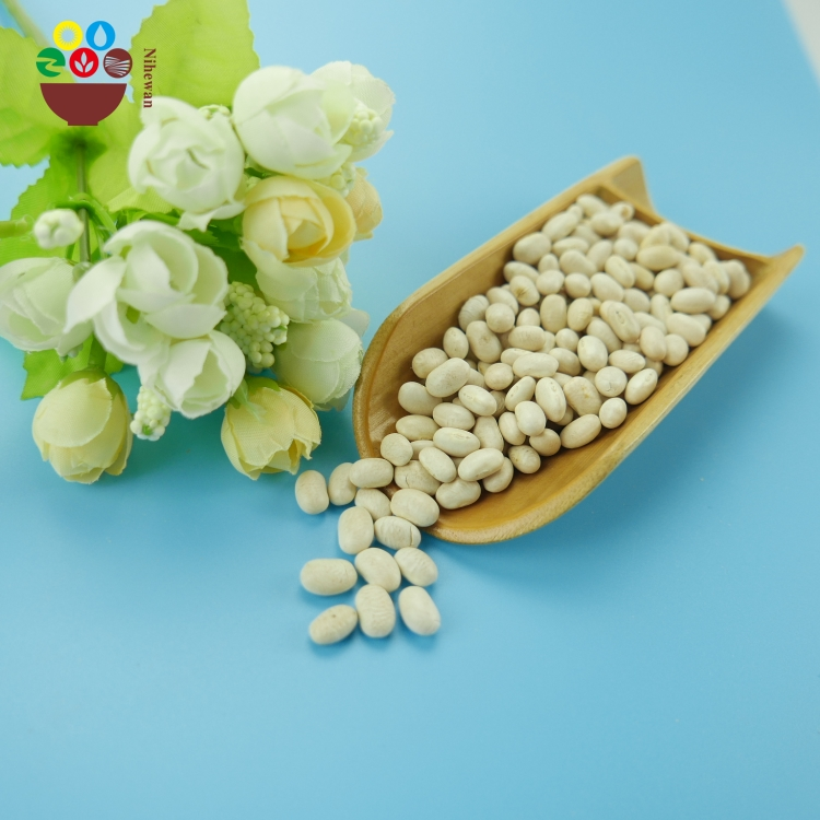 All Kinds of new crop Japanese type white kidney beans