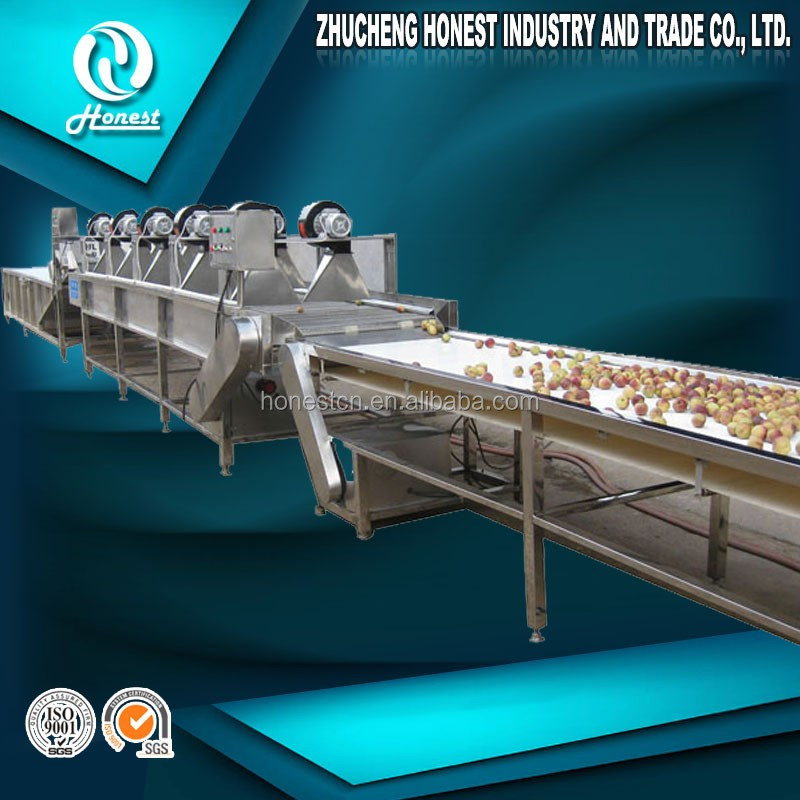 High speed fruit cleaning machinery fruit washing grading waxing machine