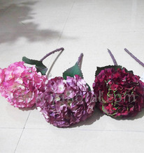 Environment Friendly dried hydrangea with short stem