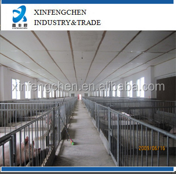 High quality factory supply fatten crates for pigs