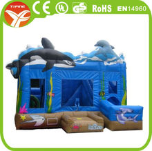 2015 inflatable dolphin water slide