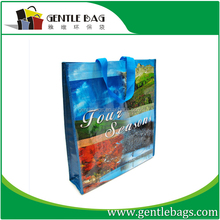 Exporter recyclable retail gift pp woven polypropylene shopping bag
