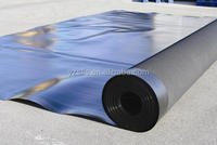 Water Storage Lagoon 2mm Smooth Geo membrane HDPE