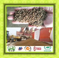 dap fertilizer 18-46-0 with high quality