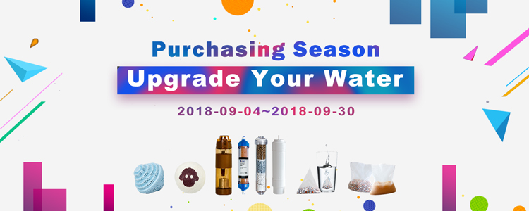 2018 best seller hand-hold dechlorine vintamin c shower head filter