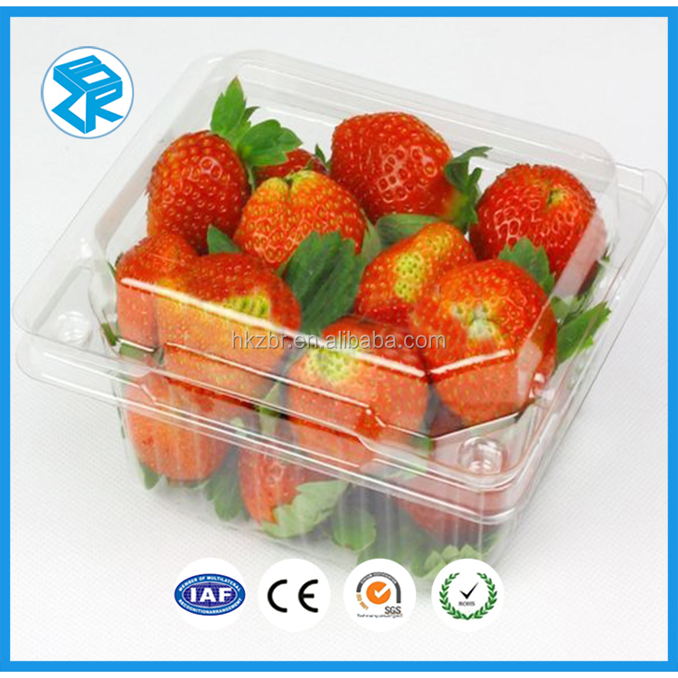 Fashion Design plastic fruit tray packaging, large plastic tray for food product