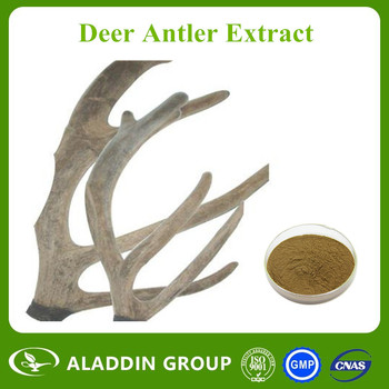 competitive price and top quality deer antler extract