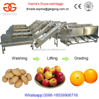 Orange Grading Machine Sorting Washing Of Fruit And Vegetables