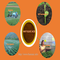 potassium yellow humic acid for agricultural foliar use fertilizer