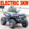 Electric Quad ATV 60V 5000W