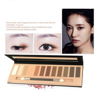 WENLE New Makeup 10 Colors Eyeshadow With Eye Luminous Eye Shadow Makeup Cosmetics