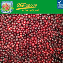 high quality fresh frozen lingonberry wholesale