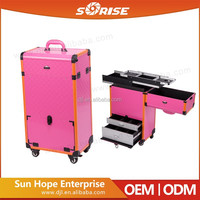 2016 New Design High Quality Travelling Professional Hairdresser Trolley Case for Everyone