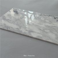 Picasso grey polished marble title nature stone