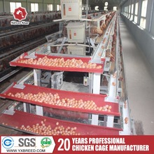fully automated open house battery cage poultry system