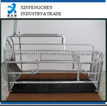 Pig farm equipment galvanized gestation stall