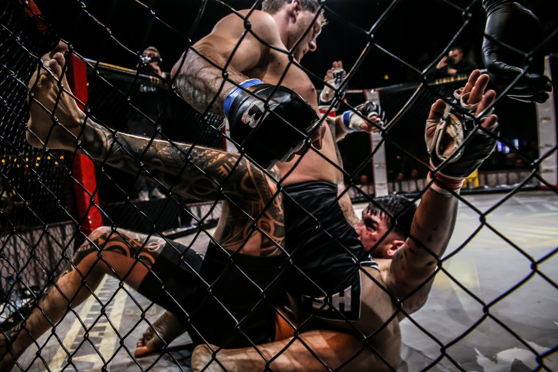 MMA CAGES 26.jpg