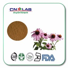 Herb Medicine 100% Natural echinacea extract powder in bulk supply