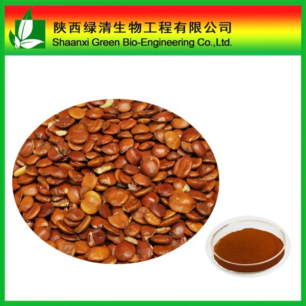 Top quality Spine date seeds extract powder Jujuboside