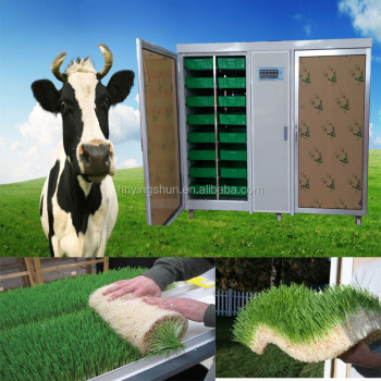 Fodder solutions designs dry hydroponic