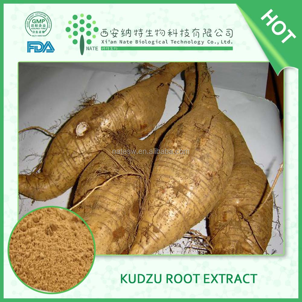 Factory supply competitive price Kudzu root extract 40% Puerarin by HPLC