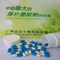cordyceps sinensis softgel capsule herbal medicine cough expectorant