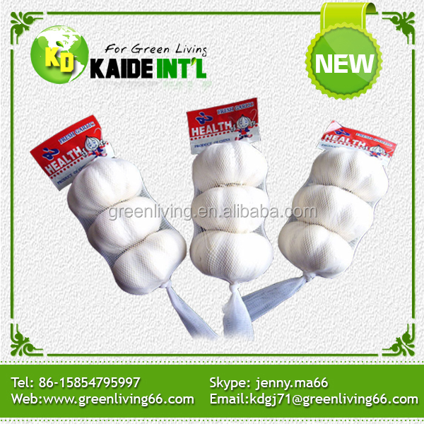 China The Fresh Garlic Price 2015