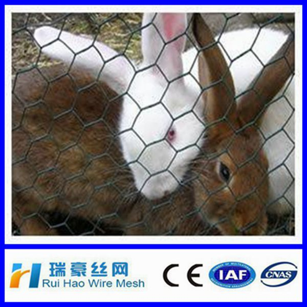 Anping High Quality square wire mesh chain link fence/ Farm fence/ rabbit fence