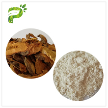 Hot sale Anti-cancer 99% Natural resveratrol Polygonum Cuspidatum root