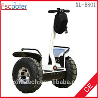 Two wheels self balance electric scooter 2 wheel personal transporter self balancing electric vehicle