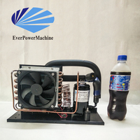 HAC550DC24-W OEM R134a Mini air cooled compressor condensing unit