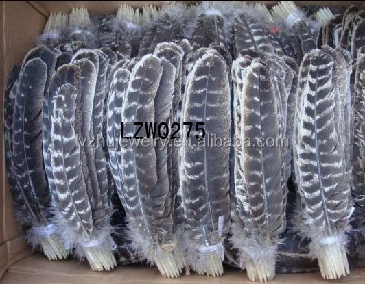 Natural Barred Mottled Turkey Wing Quill feathers LZWQ275