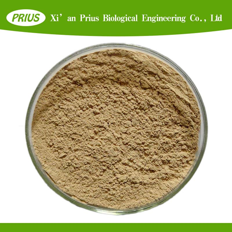 2017 Hot sale high quality natural plant sida cordifolia extract
