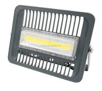 30W 50W 70W 100 Watts Led Flood Light IP66. 5 YEARS WARRANTY. white ,Outdoor Security Lights, Floodlight, Waterproof Wall Was