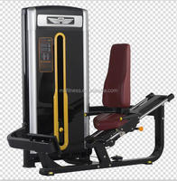 Calf Extension/Gym Equipment/Fitness Equipment