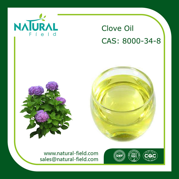 Factory Supplier Clove Essential Oil, Food Grade Clove Oil for Toothache