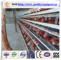 stainless steel chicken cage for hot sale