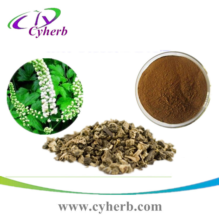 raw material Black Cohosh Extract powder with Triterpenoid Saponins 2.5% -20%