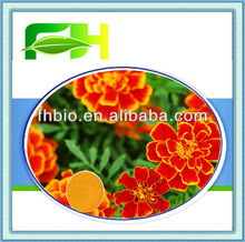 100% Natural Tagetes Patula Extract/French Marigold P.E.