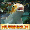 Huminrich Sodium Humate Shiny Powder Organic Fish Fertilizer