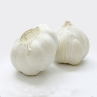 good farmer garlic china