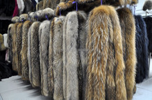 China hot selling Fluffy 100% Real Raccoon Fur Strip/Trim/Trimming for Hood