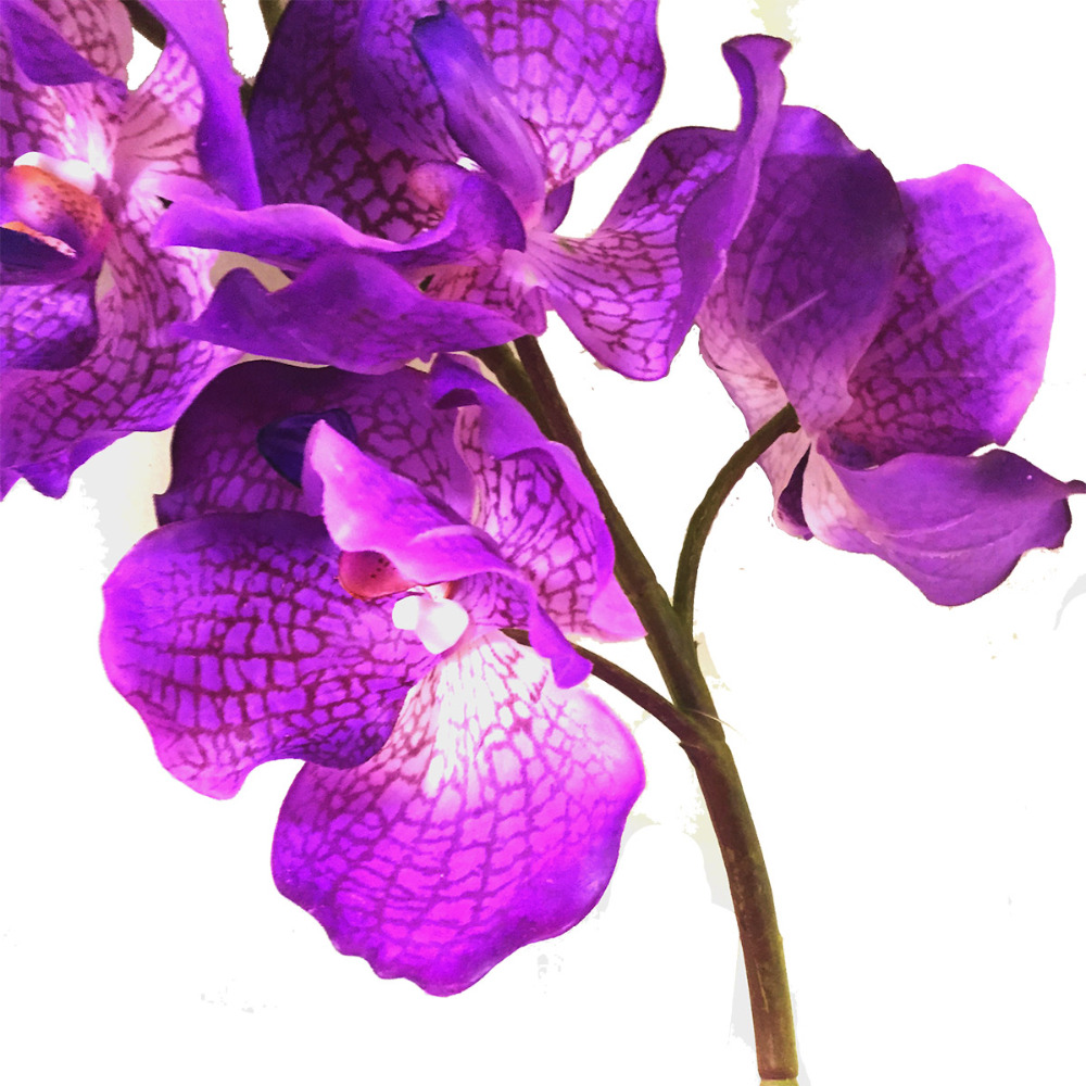 Artificial flowers artificial vanda orchid stem artificial orchids wholesale artificial blue orchids for sale fake flowers
