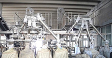 SALT PROCESSING MACHINERY