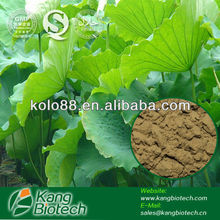 Natural Lotus Leaf Extract for slimming tea