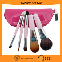 Travel cosmetic 5pcs hair brush accessories gift set