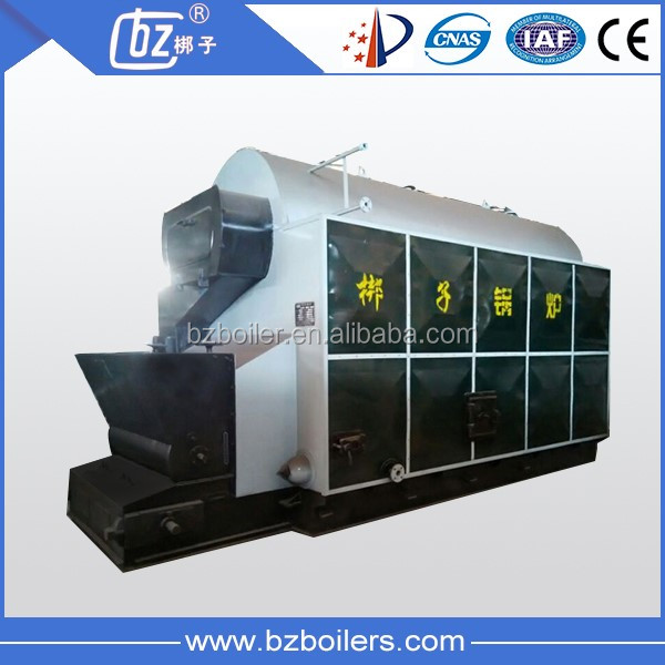 Rice Husk Biomass Fuel Wood or Coal Fired Manual fire 2t steam Boiler